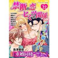 禁断の恋 ヒミツの関係 vol.22
