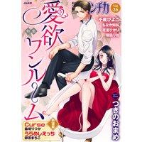 禁断LoversロマンチカVol.026愛欲ワンルーム