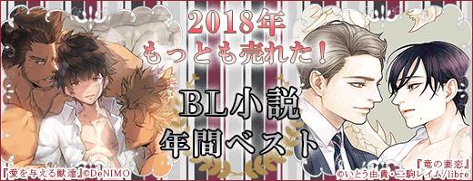 BL小説ランキング
