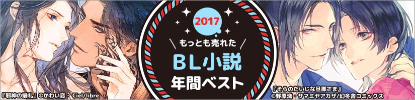 BL小説2017年間ランキング
