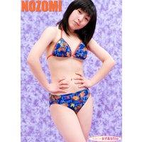 気まぐれ女子高生file 『のぞみ 高1 写真集 Vol.02』