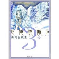 天使禁猟区 3