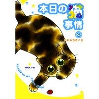 本日の猫事情(3)