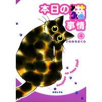 本日の猫事情(4)