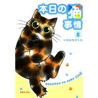 本日の猫事情(5)
