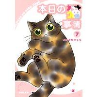 本日の猫事情(7)
