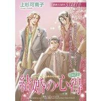 【ハーレクインコミック】一夜の恋 テーマセット vol.2