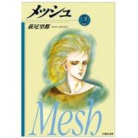 メッシュ 2