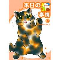 本日の猫事情(8)