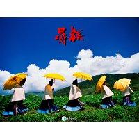 彝族 日本中国写真家共同作品集