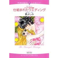 【ハーレクインコミック】兄弟ヒーローセット vol.2