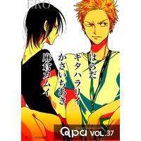 Qpa Vol.37 〜エロ