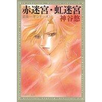赤迷宮・虹迷宮 −京&一平シリーズ 11−