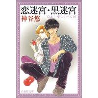恋迷宮・黒迷宮 −京&一平シリーズ 16−