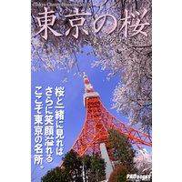 Tokyo Cherry Blossom 東京の桜 〜東京タワー編〜