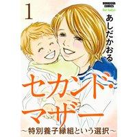 【バラ売り】セカンド・マザー〜特別養子縁組という選択〜