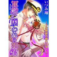 軍艦に囚われの姫君〜ドS野獣の群れに女一人〜3