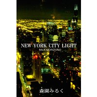 NEW YORK CITY LIGHT