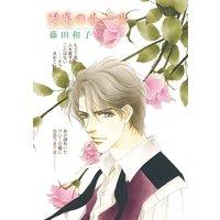 ハーレクインコミックス セット 2017年 vol.73
