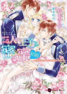 二人の王子と密×蜜 結婚〜姫花嫁は溶けるほど愛されすぎて〜