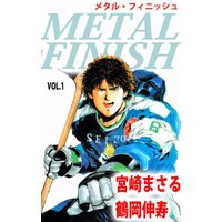 METAL FINISH