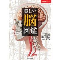 美しい脳図鑑