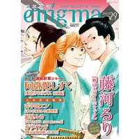 enigma vol.29