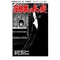 屋根裏の長い髪(伊藤潤二コレクション 45)