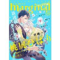 comic marginal 14