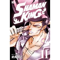 SHAMAN KING 〜シャーマンキング〜 KC完結版 11巻