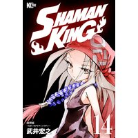 SHAMAN KING 〜シャーマンキング〜 KC完結版 14巻