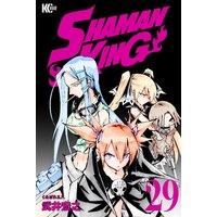SHAMAN KING 〜シャーマンキング〜 KC完結版 29巻