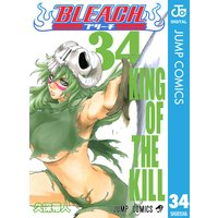 BLEACH モノクロ版 34