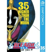 BLEACH モノクロ版 35