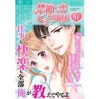 禁断の恋 ヒミツの関係 vol.91