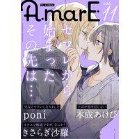 AmarE vol.11