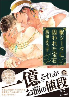 獣シークに囚われた宝石【電子限定かきおろし漫画付】