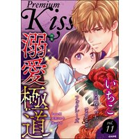 Premium Kiss Vol.11