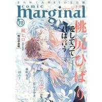 comic marginal 32