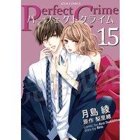 Perfect Crime 15