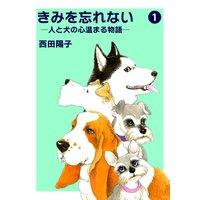 きみを忘れない −人と犬の心温まる物語−