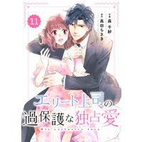 【バラ売り】comic Berry'sエリート上司の過保護な独占愛11巻