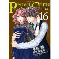 Perfect Crime 16