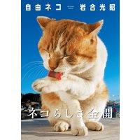 岩合光昭 写真集 「自由ネコ」