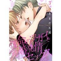 【バラ売り】運命のツガイと新婚発情セックス3