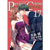 Perfect Crime 17