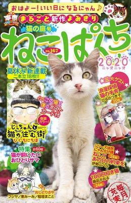 ねこぱんちNo.167 猫の庭号
