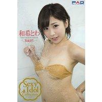 Sexy ldol Collection 和希とわ 写真集 Vol.03