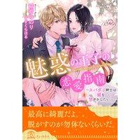 【全1−6セット】魅惑の王子の恋愛指南〜スパダリ紳士は姫を甘やかしたい〜【イラスト付】