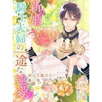 新婚騎士夫婦の一途な純愛〜初心な蜜月の憂い事〜